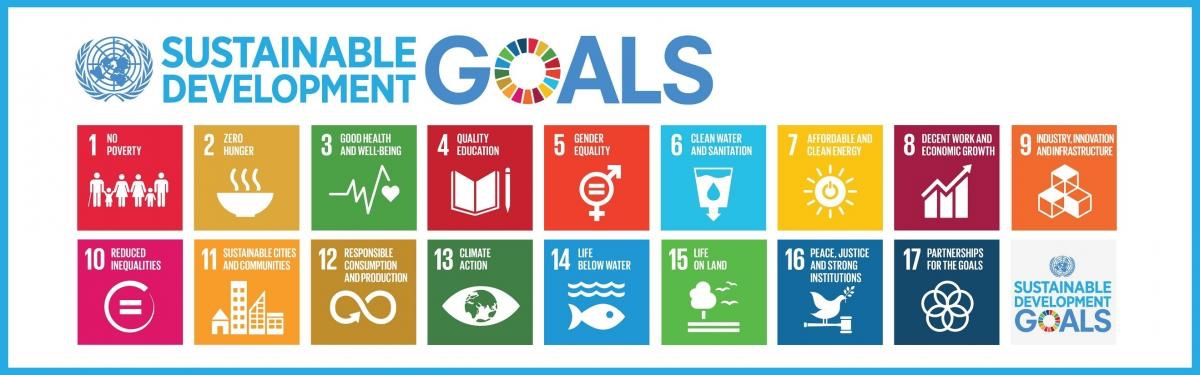 Image of the UN's 17 Sustainable Development Goals in a grid.