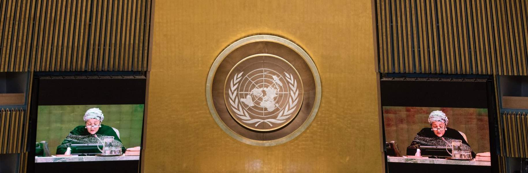 United Nations Chamber in session